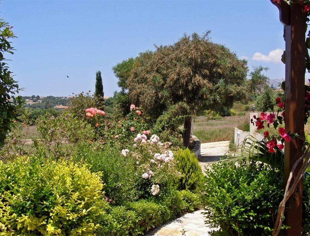 Rose Garden Olive Grove Seven Islands Villa Kefalonia