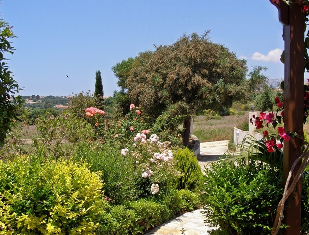 Rose Garden Olive Grove Seven Islands Villa Kefalonia